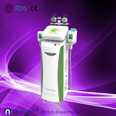 China Cryolipolysis slimming beauty machine / vacuum slimming beauty machine with Bottom Price supplier