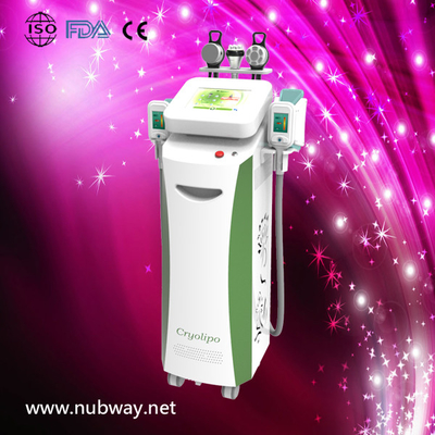 China RF & cryolipolysys / cryolipolysis vacuum slimming beauty machine with Bottom Price supplier