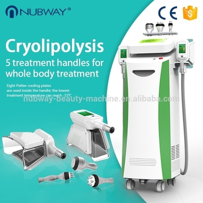 China Cool sculption weight loss Fat Freezing Cryolipolysis slimming machine supplier