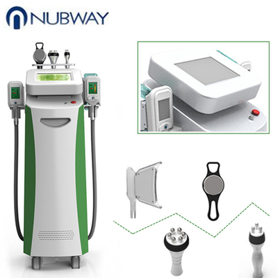 China Cryolipolysis fat freeze slimming machine  body shaping freeze  fat machine supplier