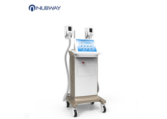China Mobile Cryolipolysis Slimming Machine For Cellulite Reduction OEM/ODM Service supplier