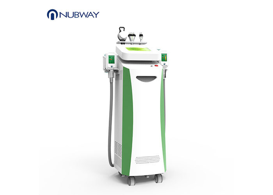 China Fat Freeze Slimming Kryolipolyse Weight Loss  Cryolipolysis  Slimming Machine supplier