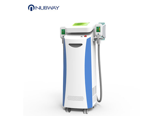 China Weight Loss Body Slimming Fat Freezing Cryolipolysis Slimming Machine supplier
