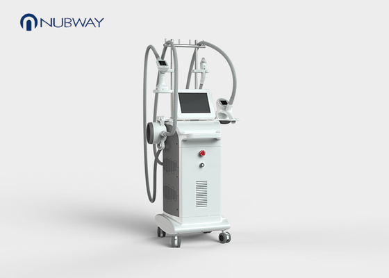 China whole body Velashape Slimming Machine / cryolipolysis fat freezing machine supplier