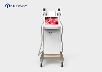 China Two Handles Cryolipolysis Slimming Machine For Spa With Reheating Function supplier