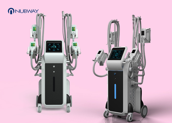 China 4 Cryo Handles Fat Removal Machine / Cool Sculpture Fat Freeze Machine supplier