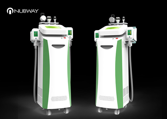 China Completely Safe 5 In 1 Slimming Machine , 5 Handles Cool Tech Fat Freezing Machine supplier