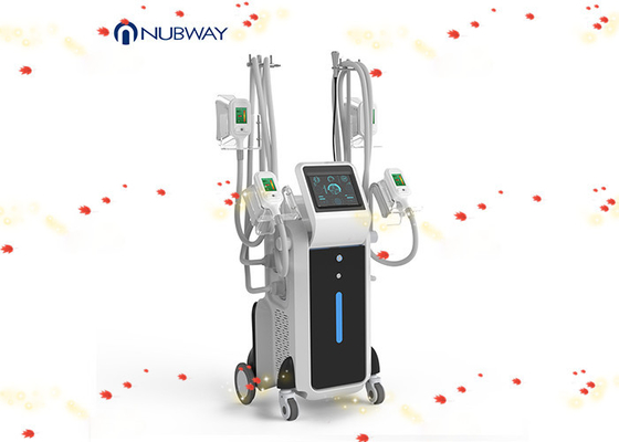 China Best 4 handles cool shape cryolipolysis slimming fat freeze machine weight loss supplier