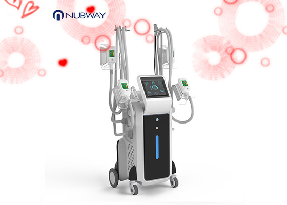China cryolipolysis 4 handles and double chin handle vacuum weight lose beauty slimming machine supplier