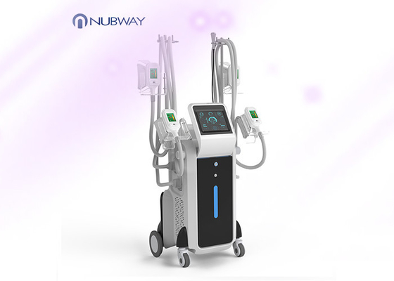China Cool sculption fat freeze slimming machine weight loss body slimming cryolipolysis machine supplier