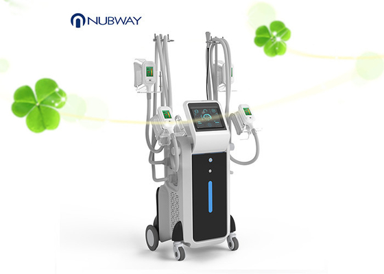 China Latest Cryolipolysis Fat Freeze Slimming Machine User Friendly Design supplier