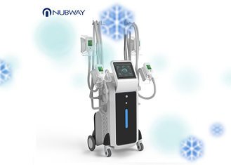 Cryolipolysis Fat Freeze Slimming Machine Cool Shaping Device 4 Handles