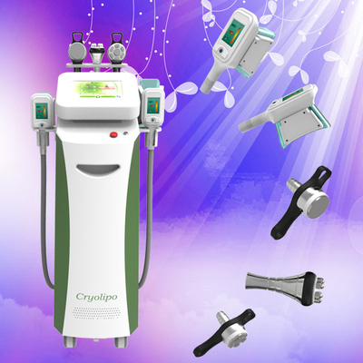 China BIG PROMOTION--Cryolipolysis slimming device for fat losing on the whole body distributor