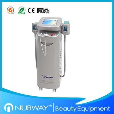 China Best Price for Two handles Cryolipolysis slimming machine for weight losing for spa use distributor