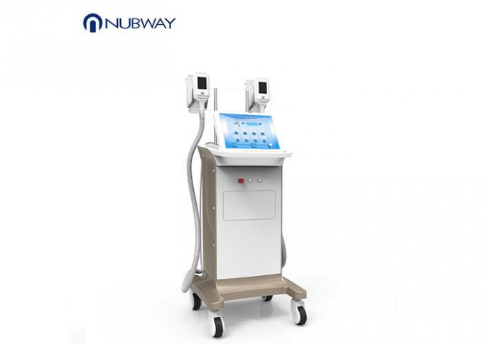 Two Handles Cryolipolysis Slimming Machine For Spa With Reheating Function